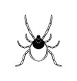 mite in engraving style design element vector image