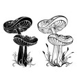 two silhouette mushrooms vector image
