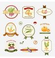 Vegetables set of label design vector image vector image