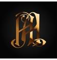 Monogram Aa gold isolated on black vector image