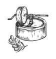 ancient olive oil press engraving vector image vector image