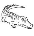 cartoon cute crocodile coloring page vector image vector image