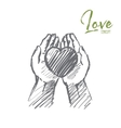 Hand drawn heart in human palms with lettering vector image