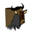 head wildebeest african wildlife animal vector image vector image