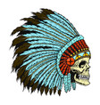 native indian skull in traditional headdress vector image vector image