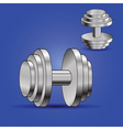 two dumbbells vector image vector image