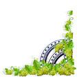 vintage frame grapes vector image vector image