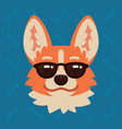 corgi dog emotional head in sunglasses vector image