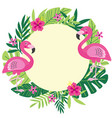 tropical frame with flamingo vector image
