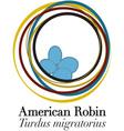 American Robin vector image vector image
