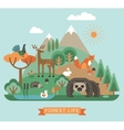 forest life vector image vector image