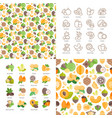 nuts icons and patterns vector image