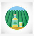 tequila bottle and shot flat icon vector image vector image