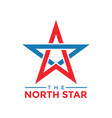the north star graphic design template vector image