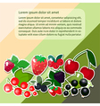 berries text vector image vector image