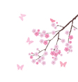 blooming cherry branch vector image