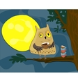 Midnight owl vector image