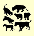 Panther puma and tiger animal silhouette