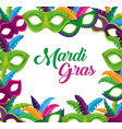 party masks with feathers to mardi gras holiday vector image