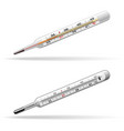 thermometers medical glass mercury and alcohol vector image vector image