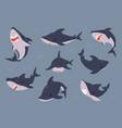 cartoon shark sea fish swimming in water vector image