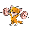 Kitten-athlete lifts the bar vector image