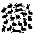 Rabbit Art Silhouettes vector image vector image