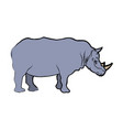 rhino wild animal africa exotic mammal vector image