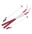ski equipment pole and stick winter sports icon vector image