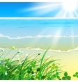 01 paradise Sea grass vector image vector image