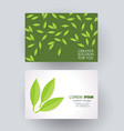 business card design with green leaves composition vector image vector image