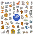 cartoon cat characters large set vector image vector image