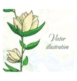 Floral design template Watercolor hand drawn vector image vector image