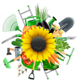 Garden Accessories with Sunflower vector image vector image