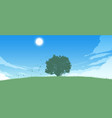 lonely tree on field vector image