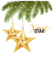 origami christmas holiday star on spruce vector image vector image