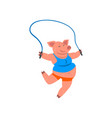 pig in sport uniform jumping with skipping rope vector image vector image