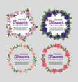 set floral plants with leaves border and message vector image