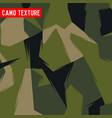 camo texture camo army camo soldier camo abstract vector image vector image