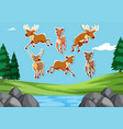 deer sticker in nature background vector image vector image