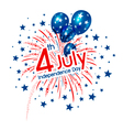 firework 4th of july american independence vector image