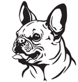 french bulldog black white vector image vector image