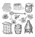 honey bee honeycomb and other thematically hand vector image