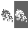 set of monochrome pizza logos vector image vector image