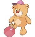 A stuffed toy bear cub a soccer player cartoon vector image