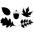 Acorn with Leaves Silhouette vector image