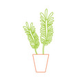 color line naturals plants inside pot with leaves vector image vector image