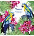 Exotic card with parrot birds and flowers vector image vector image