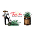 harvesting agave farmer with fruit and a wooden vector image vector image