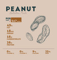 nutrition facts of peanut vector image vector image